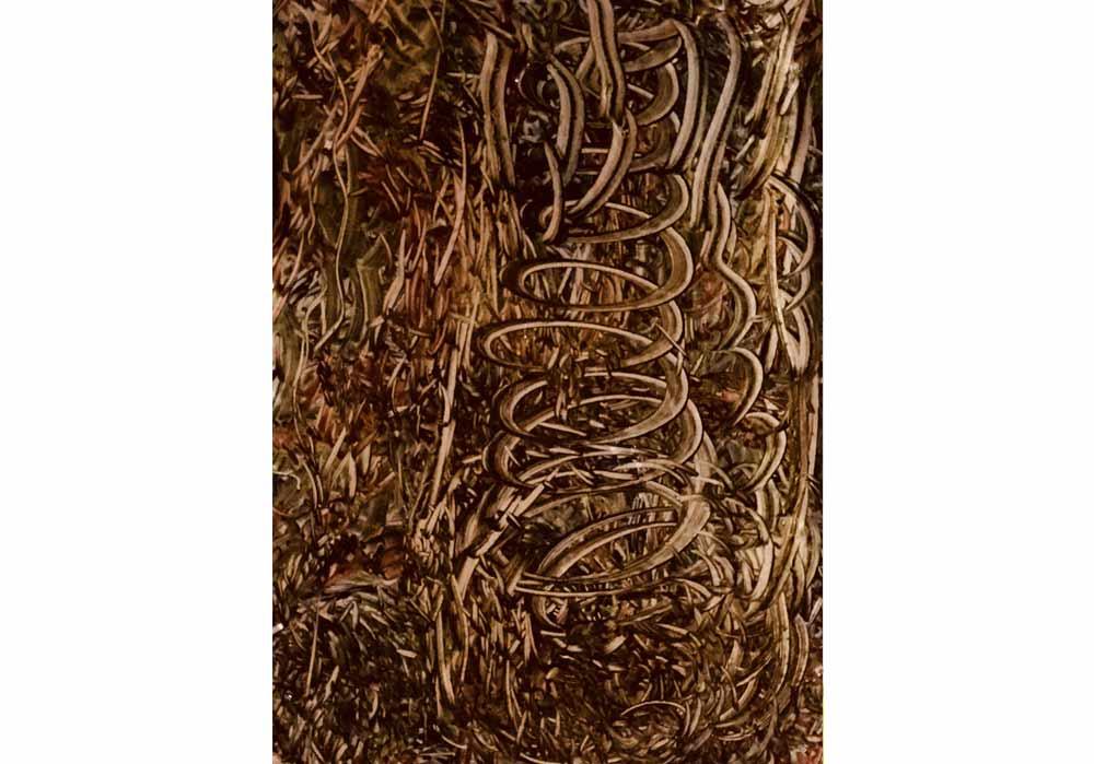 Segede Demissie - stomage of an alien - MT-Galerie
